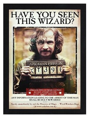 Framed Harry Potter Wizard Wanted Movie Poster A4 Size In Black Or White Frame