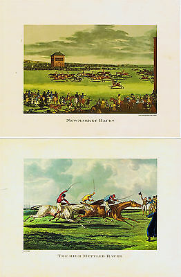 50 sets of 2  Vintage Horse Racing Sporting Prints High Mettled Racer Wholesale