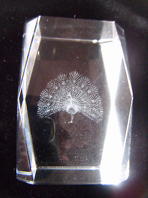 Lovely 3D Lazer engraved crystal peacock paperweight
