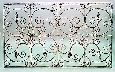 Pair of Italian Neo-classic Style Iron Gates with Scroll Design and 2 Fleur de l