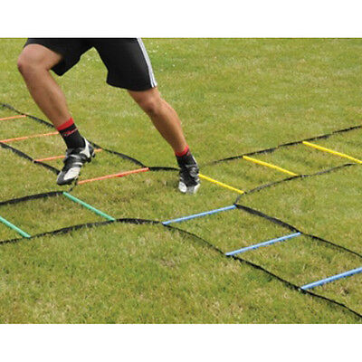 4 Way Agility Ladder 40 Rung Great For Football, Rugby, Mma, Fitness S& Q