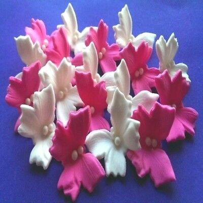 20 Edible sugar butterflies cake cupcake toppers decorations Hot pink/White