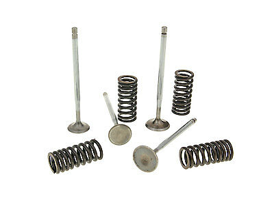 cylinder head valves Malossi racing with springs for Piaggio 4V LC engines