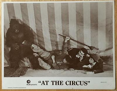 Groucho,Chico,Harpo Marx with gorila At the Circus RR #3 lobby card 611