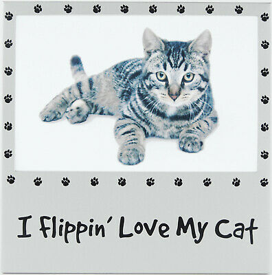 I Flippin' Love My Cat 6x4 Photo Picture Frame Silver tone Metal Pet Gifts New