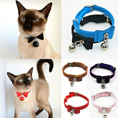 Réglable Animal Chien Chat Chaton Chiot cuir PU Collier Avec Protection Boucle