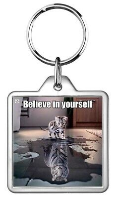 Look See Believe Yourself Reflect Puddle Cat Kitten Tiger Animal Pet Keyring