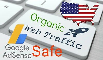 30,000  Web Traffic WORLDWIDE from Search Engine and Social Media