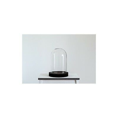 Glass Display Cover Dome Cloche With Black Wooden Base by TOBS
