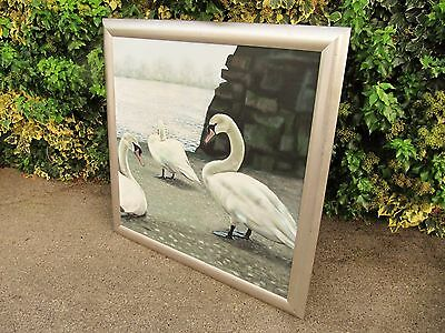 Massive Original Contemporary Oil On Canvas Painting. Swans