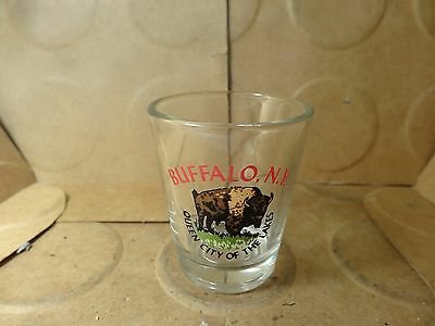Buffalo New York/Queen City Of The Lakes Shot Glass (Used/EUC)