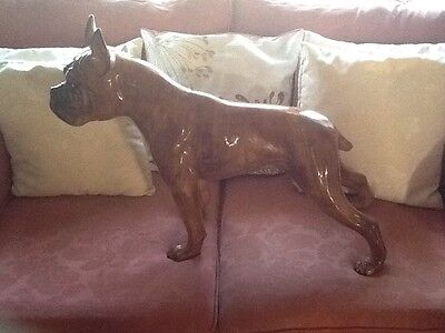 VERY LARGE PORCELAIN FRENCH BULLDOG,30x20ins