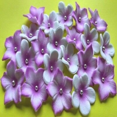 20 Edible Sugar Flowers Cake Toppers Decorations Purple/silver (Airbrushed)