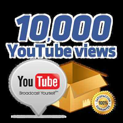 10 000 view Youtube, Delivery Time 5 days
