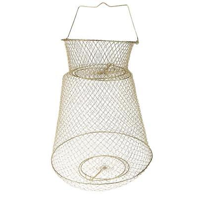 Collapsible Steel Wire Fish Basket Shrimp Crab Cage 38cm - Gold