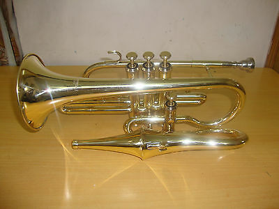 BRAND NEW BRASS Bb FLAT ECHO CONRET WITH FREE HARD CASE+MOUTHIPIECE