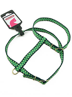 Harnais Vert Marque Zolux pour chat  - Green Harness for Cat
