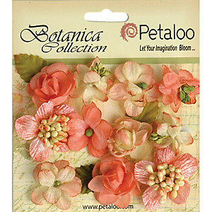 NEW Petaloo - Botanica Minis - Coral  - 1In 11Pack