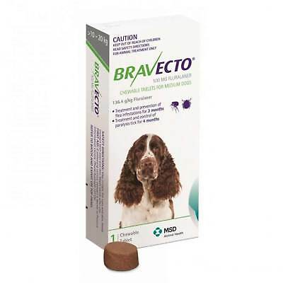 Bravecto Medium Dog Green 10-20KG Single Flea Tick Chew 3 Month Protection