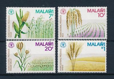 [50815] Malawi 1981 Agricultural produce Maize Rice MNH