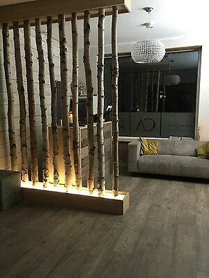Decorative logs  fantastic silver birch poles from the kent forest fantasic