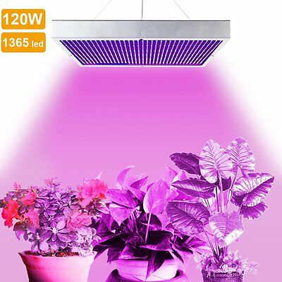 1365 LED 120W Grow Light Panel Plants Red Blue Spectrum Lamp Indoor Hydroponic