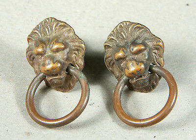A Pair of Lion-head Ring Drawer Pulls