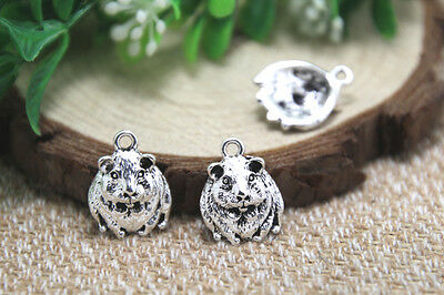 11 x 34mm /'Baby Guinea Pigs/' Wooden Pendants Charms PN00039429