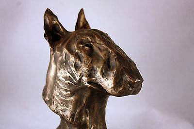 Limited Edition Bronze Bust English Bull Terrier Sculpture Ornament Figurine