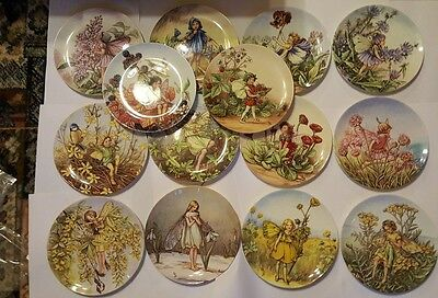 Fourteen Wedgwood Plates From The World Of The Flower Fairies