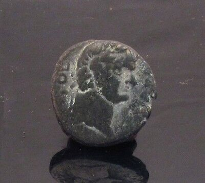 Ancient Bronze Roman Coin Ashqelon Ascalon City