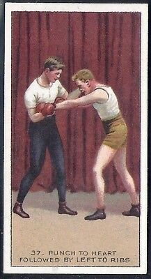 Carreras-The Science Of Boxing Series (Black Cat Back)-#37- Quality Card!!!