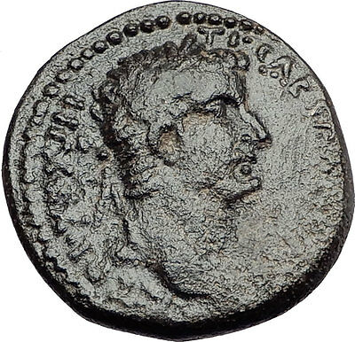 TIBERIUS 31AD Antioch Large SC BIBLICAL TIME Authentic Ancient Roman Coin i57883