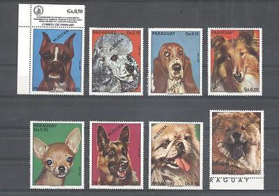 (933728) Dogs, Paraguay