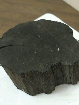 Bog oak (morta, wood) of the age ranging from 1270 to 5460 years