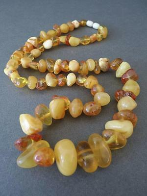Vintage Natural Baltic Butterscotch Egg Yolk Amber Graduated Bead Necklace