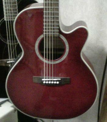Takamine EG540C-CCBY Acoustic/ Electric Guitar - NEW!
