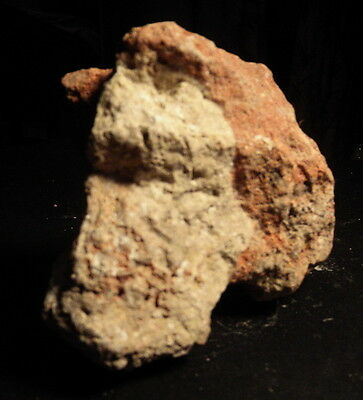 Carved Stone Effigy Anthropomorphic Paleo Horse Shaman Bird Color Red Yellow TX