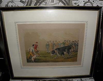 5 Henry Alken Prints, - Bull Baiting, Bear Baiting, Drawing the Badger ETC