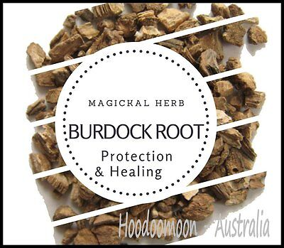 Burdock Root 10g Magical Herb  Healing Spellwork Protection