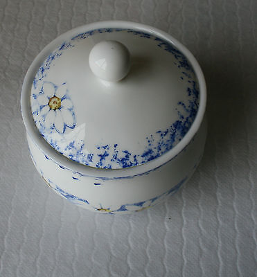 HONITON EXCLUSIVE DESIGN LIDDED POT  Blue and White floral