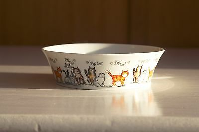 """Cat Bowl new """" Top Cat"""" by Mason and Cash"""
