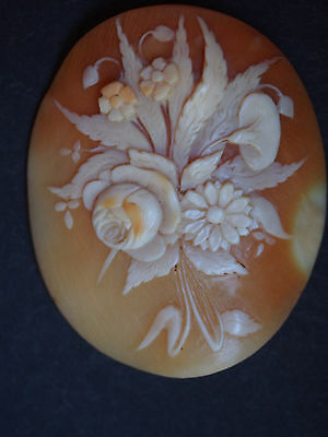 Large Antique Calla Lily Daisy Roses Wild Floral Bouquet Carved Shell Cameo 1.75