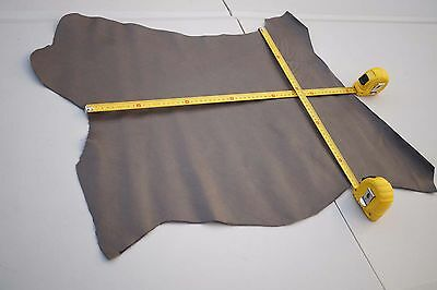 Two tone Beige Cowhide leather piece/off-cut 60 x 45cm embossed stingray design