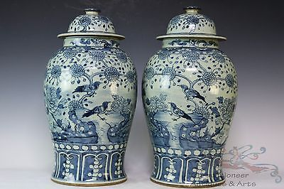 Blue and White Pair Big Beautiful Chinese Porcelain Flowers Birds Vase Jars