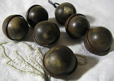 """7 Antique Vegetable Ivory ACORN BALL BUTTON - Old 5/8"""" Tagua  Sewing Primitive"""