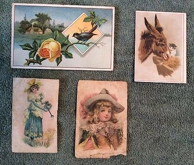 Lion Coffee Trade Card Lot- 4 Cards
