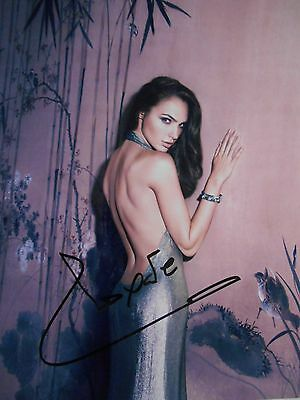 Gal Gadot  8x10 auto photo in Excellent Condition