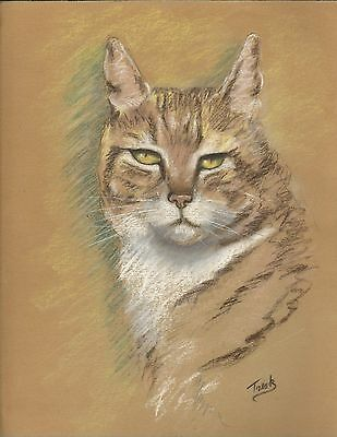 Original 1930s pastel portrait of a cat - 31 x 39 cms - signed Tresk