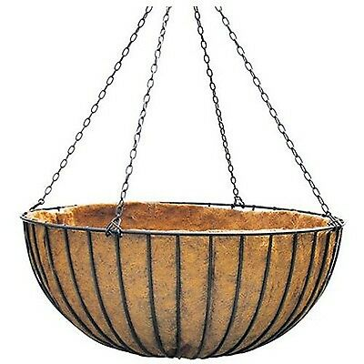 Border Concepts 72253 Liberty Hanging Basket 16-Inch Black